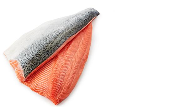 fillets-salmon-hi