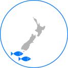 infographic-location-arrow-squid