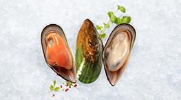 aquaculture-tile-mussels-263x145px