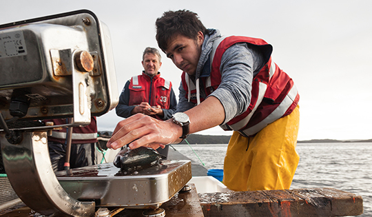 fisheries-management-540x315px